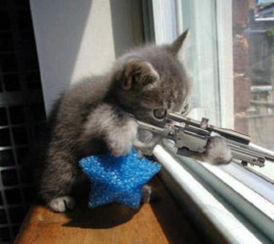 Chat sniper